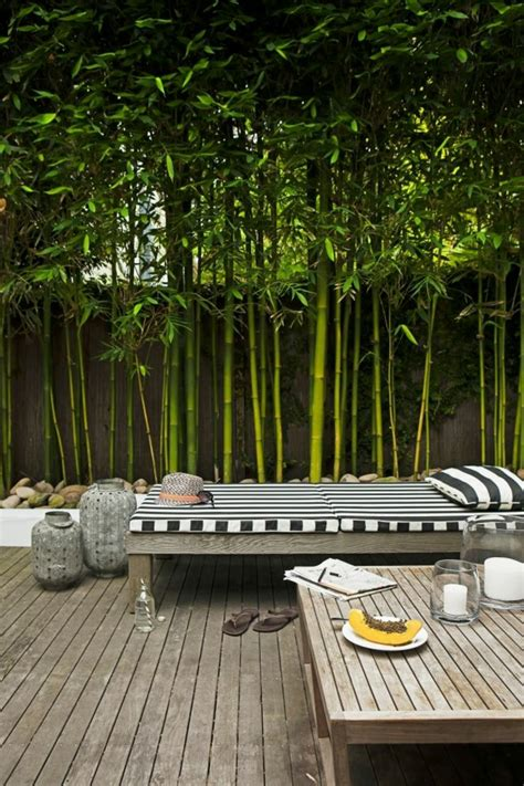Merveilleux Planter Des Bambous Dans Son Jardin #2: Planter-des-bambous-terrasse-en-bois-ext%C3%A9rieur2.jpg