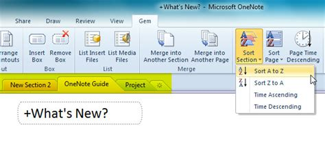 onenote sort sections collect commonly used onenote 2010 options functions in
