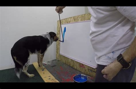 puppy his own paints his own name