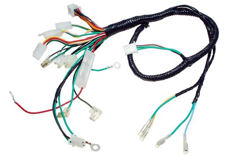 wiring harness engine for hammerhead 150ss