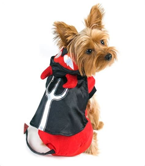 costumes for yorkies costume for dogs yorkie costumes for dogs and