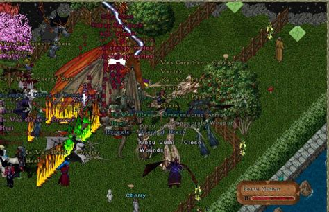 the best mmorpg best mmorpg by year part 1 1996 2005 mmobro