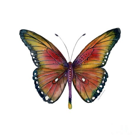 66 spotted wing butterfly painting by kirkpatrick