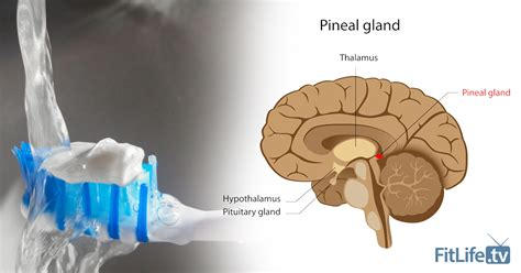 Detox Flouride Feel by Fluoride Is Damaging Your Pineal Gland