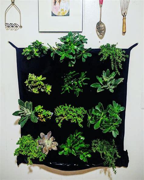 vertical gardening ideas   gorgeous