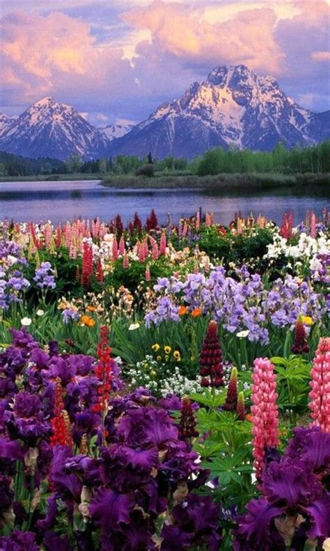 beautiful landscapes in the world the coolest and most beautiful landscapes in the world