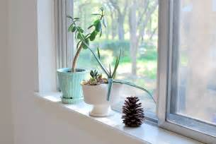 Window Sill Plants Decor Feeding The Soil Montessori Bedroom For A One Year