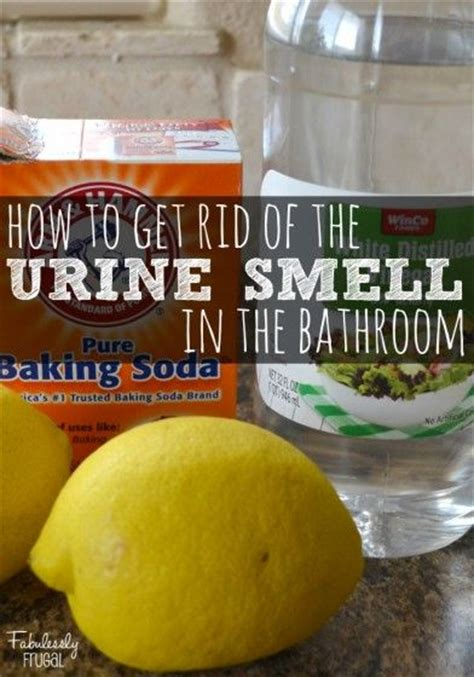 Urine Smell Out Of by 25 Best Ideas About Bathroom Cleaning Tips On