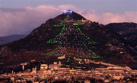 world s largest christmas tree in gubbio lit up from