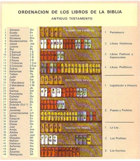libreria evangelica ordenaci 243 n de los libros de la biblia la biblia b 225 sica