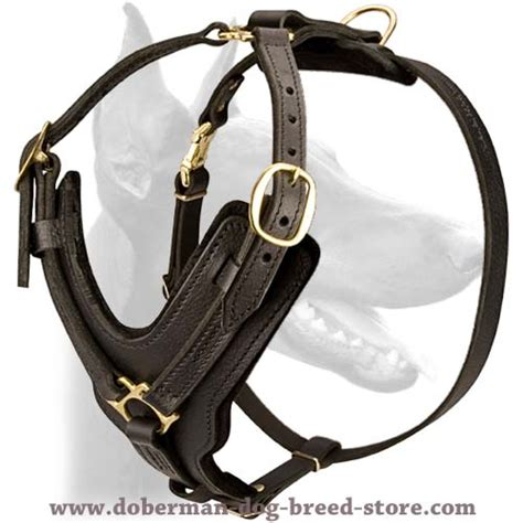 Most Comfortable Safety Harness by Exclusive Leather Harness Durable Everyday