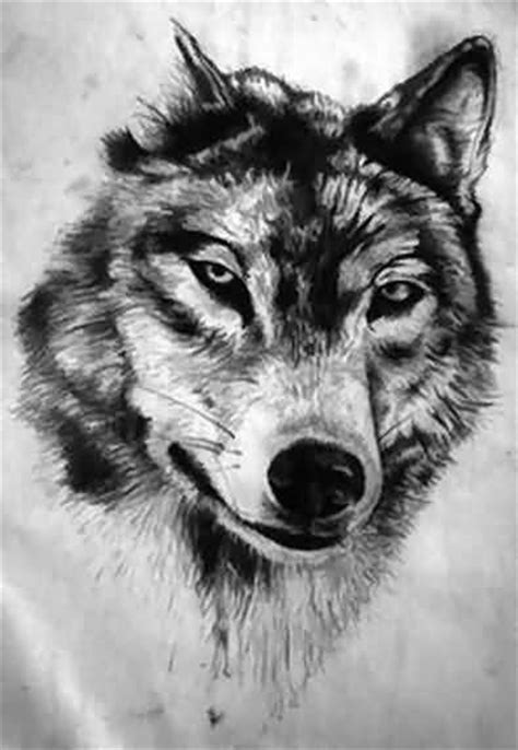 wolf face tattoo 50 amazing wolf designs golfian
