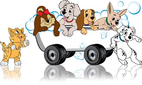 mobile groomer zoom to groom mobile pet grooming where the groomer comes to you