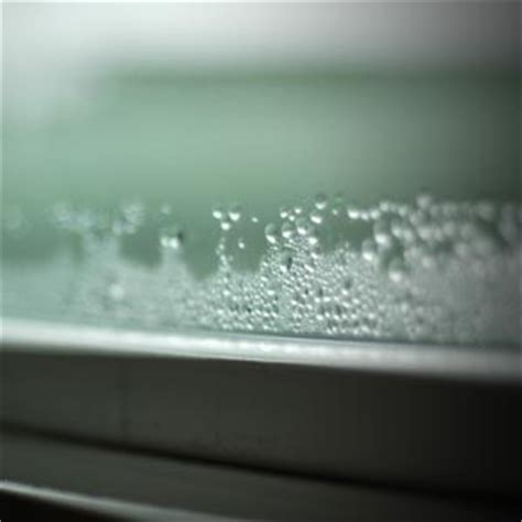 condensation on outside of house windows 7 things your windows are trying to tell you