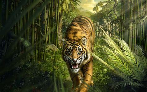 Kinder Auto Groß by Die 66 Besten Tiger Hintergrundbilder