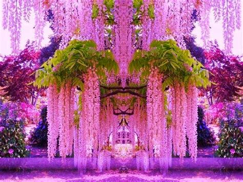japanese flower gardens kawachi fuji gardens japan feel the planet