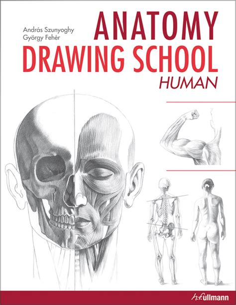 doodle drawing books pdf anatomy drawing school human buy book