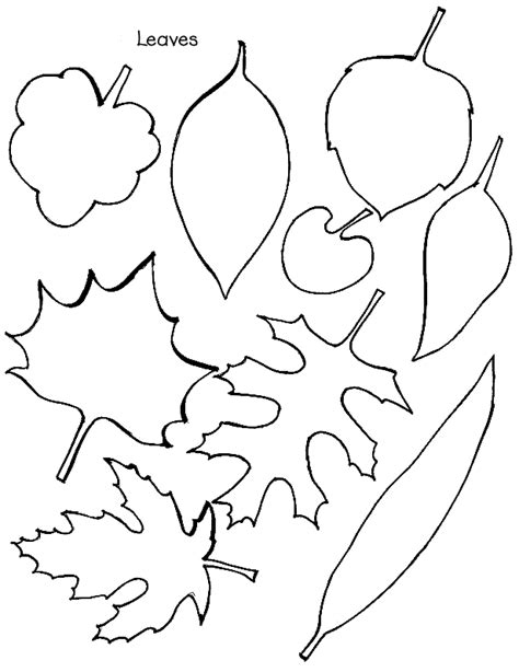 printable fall leaf shapes printable leaf shapes coloring home