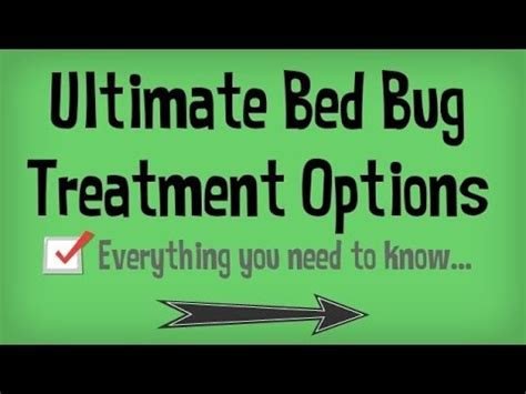 how to go to bed fast learn how to get rid of bed bugs fast natural treatments