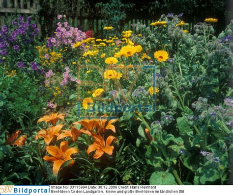 landhausgarten ideen details zu 0003115994 beet ideen f 252 r landhausgarten