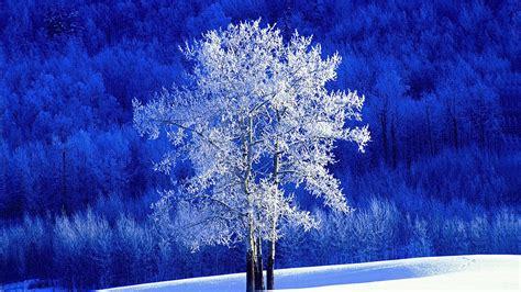 themes for windows 7 winter 冬のお呼ばれ 冬の結婚式パーティードレスの選び方 dress code note