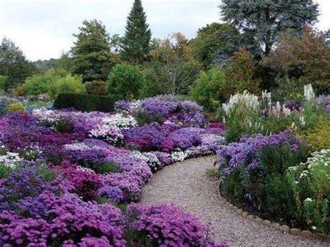 giardino sinergico magia e realt 224 giardino sinergico terra nuova
