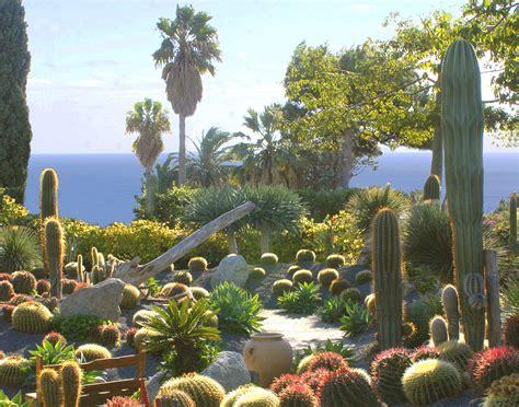 giardino botanico ischia giardino botanico ravino pagina ufficiale cactus