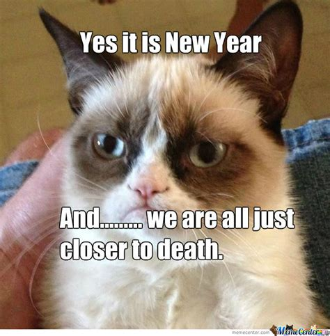 Grumpy Cat New Years Meme - grumpy cat new year 28 images grumpy cat new year yes