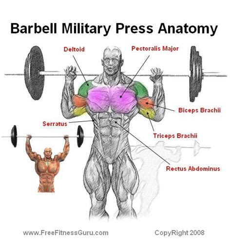 military press vs bench press military press barbell workout routines pinterest military the o jays and search