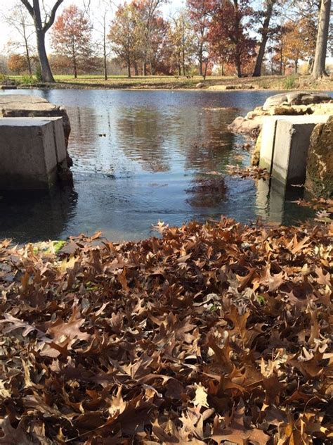 Retention Pond In Backyard by Retention Farm Pond Construction Filtration Maintenance