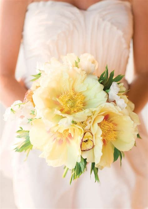 peas and peonies 749 best images about bouquets light white on