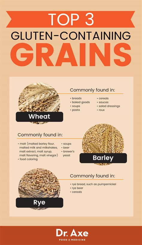 whole grains vs gluten gluten free grains your digestive system will dr axe