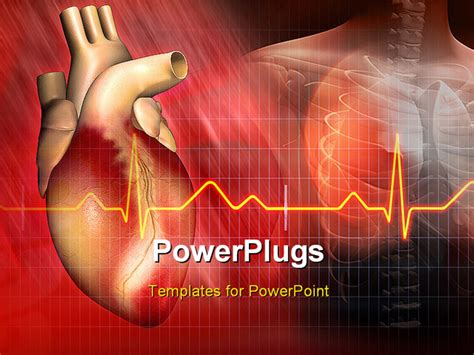 Digital Illustration Of A Heart And Human Body Powerpoint Cardiology Powerpoint Template