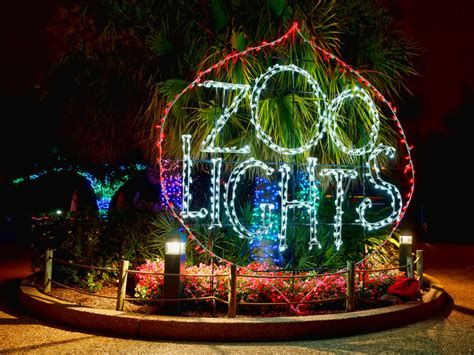 what time does zoo lights start mouthtoears com