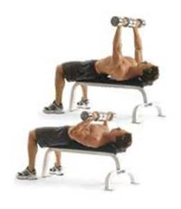 close grip bench press with dumbbells close grip bench press with dumbbell google search 3