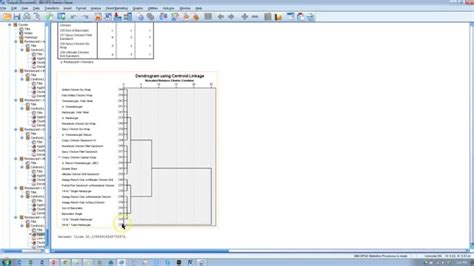 spss tutorial cluster analysis hierarchical cluster analysis spss youtube