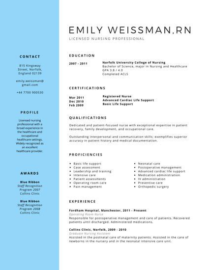 professional nursing resume template customize 294 professional resume templates canva
