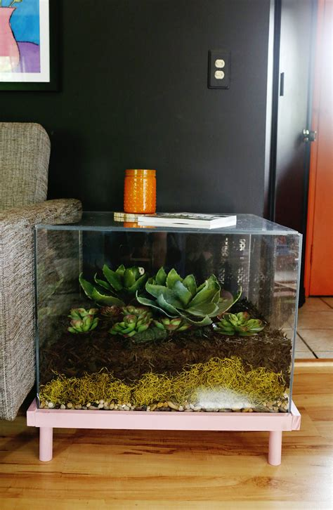 terrarium table terrarium side table diy a beautiful mess