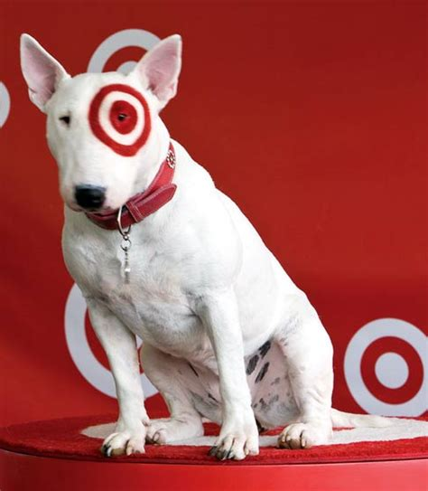 bullseye breed target breed breeds