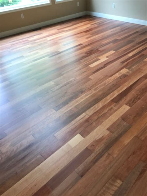 brazilian cherry hardwood refinish  commercial grade