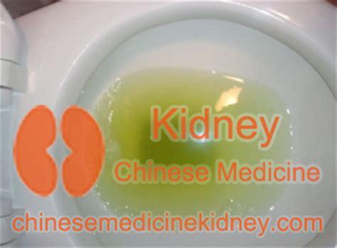 Foamy Urine During Detox by Protein Shake Urine