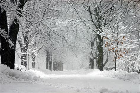 Interior Plains Weather by Scholten Landscaping Grand Rapids Mi