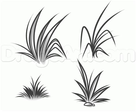How To Draw Grass Step By Other Landmarks &amp Places FREE  sketch template