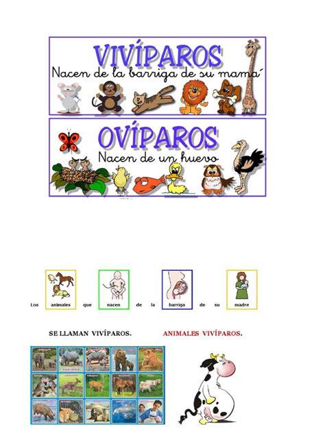imagenes animales oviparos y viviparos animales viv 237 paros y ov 237 paros
