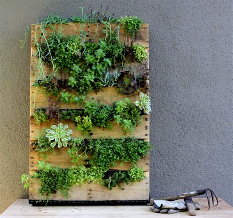 Vertical Gardening With Pallets Recycled Pallet Vertical Garden Design Sponge