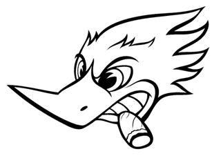 Racing Duck Aufkleber by Woody Woodpecker 4 Decal Sticker