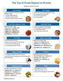 top 10 foods highest in protein infographic