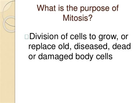 what is the purpose of mitosis study guide answers