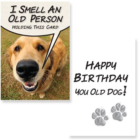 birthday card template for dogs birthday card from greeting cards for dogs card