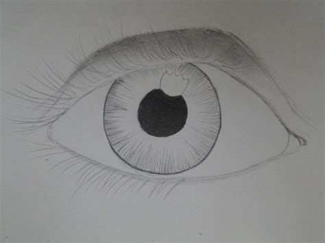 imagenes de ojos faciles de dibujar como dibujar ojos paso a paso arte taringa